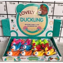 Заводные игрушки Птички в боксе 12 шт 821 (2)