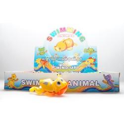 Заводные лягушки плавающие в боксе 12 шт 011-E