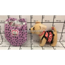 Собачка Чичилав в сумке 4566